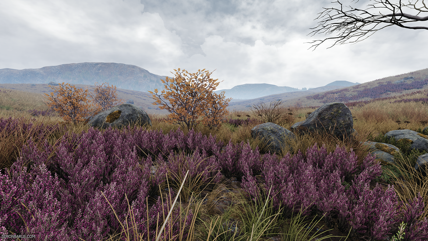 Highlands_03.png