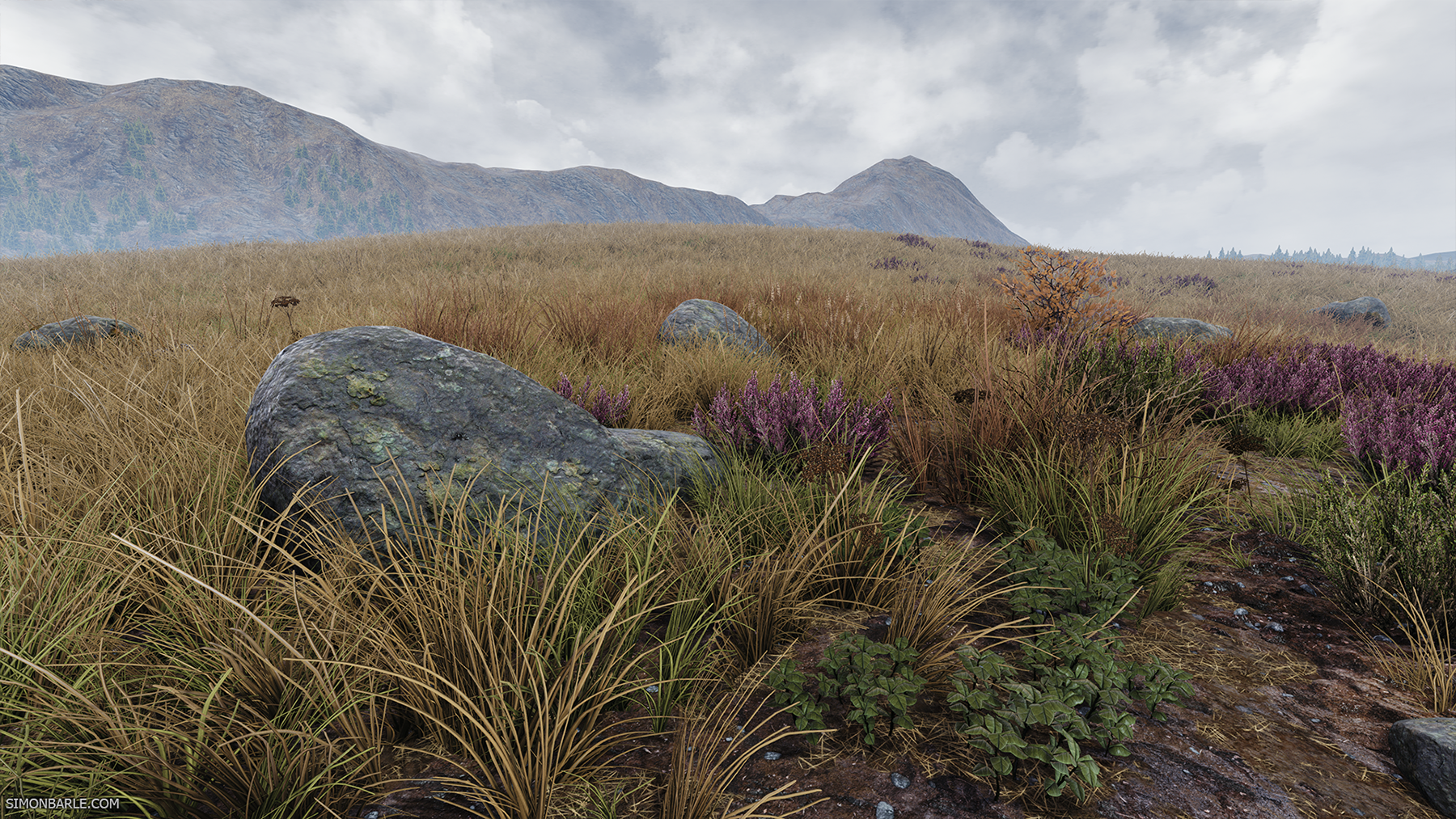 Highlands_06.png