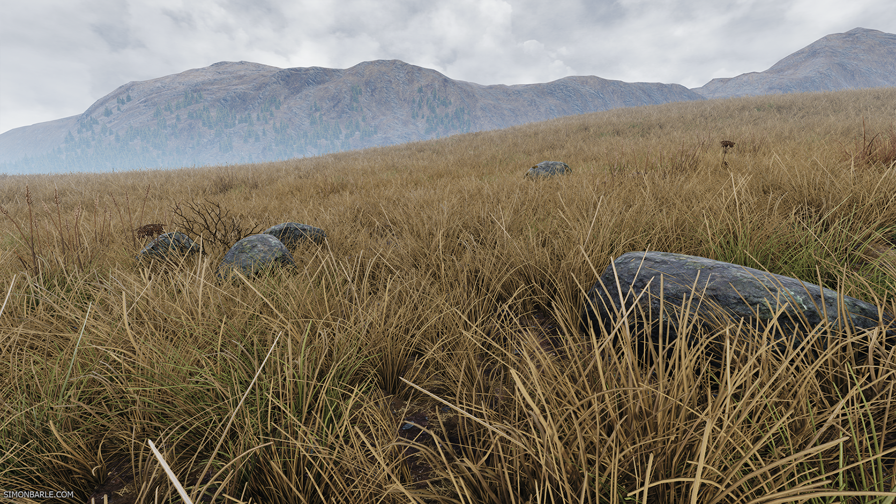 Highlands_07.png